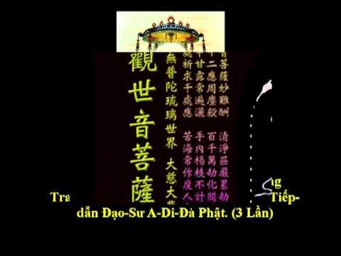 (5/7) Tụng 48 Lời Nguyện-Niệm Phật-(Nghĩa)-Thầy Thích Trí Thoát tụng