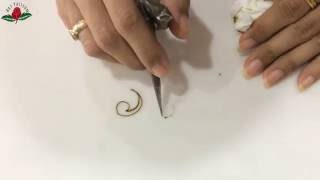 embellishment 18 : learn basic peacock swirl and peacock paisley for beginners