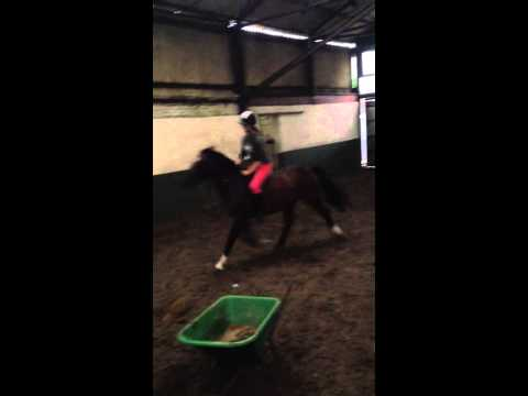 Horse riding Kristy jumping fun bareback 2