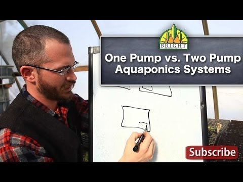One Pump vs. Two Pump Aquaponic Systems