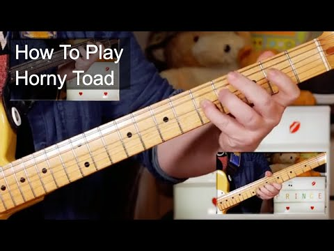 'Horny Toad' Prince Guitar & Bass Lesson