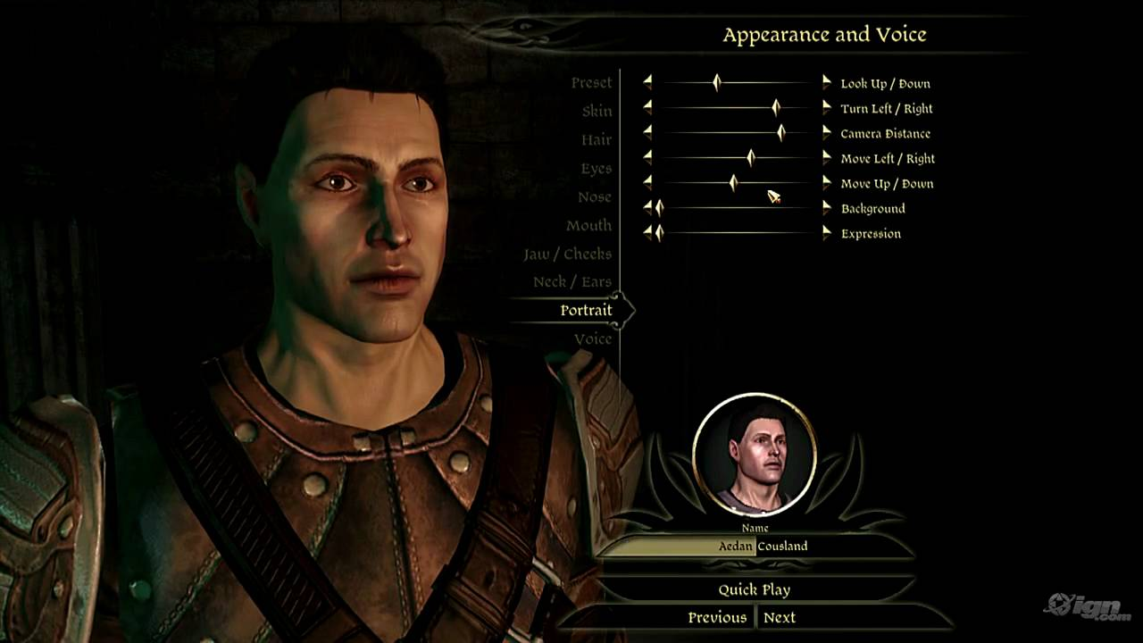 Dragon Age Character Builds