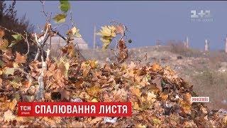 Комунальники Миколаєва закликають містян не палити листя