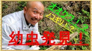 ほぼ毎日動画配信中!チャンネル登録よろしくお願いします!https://www...