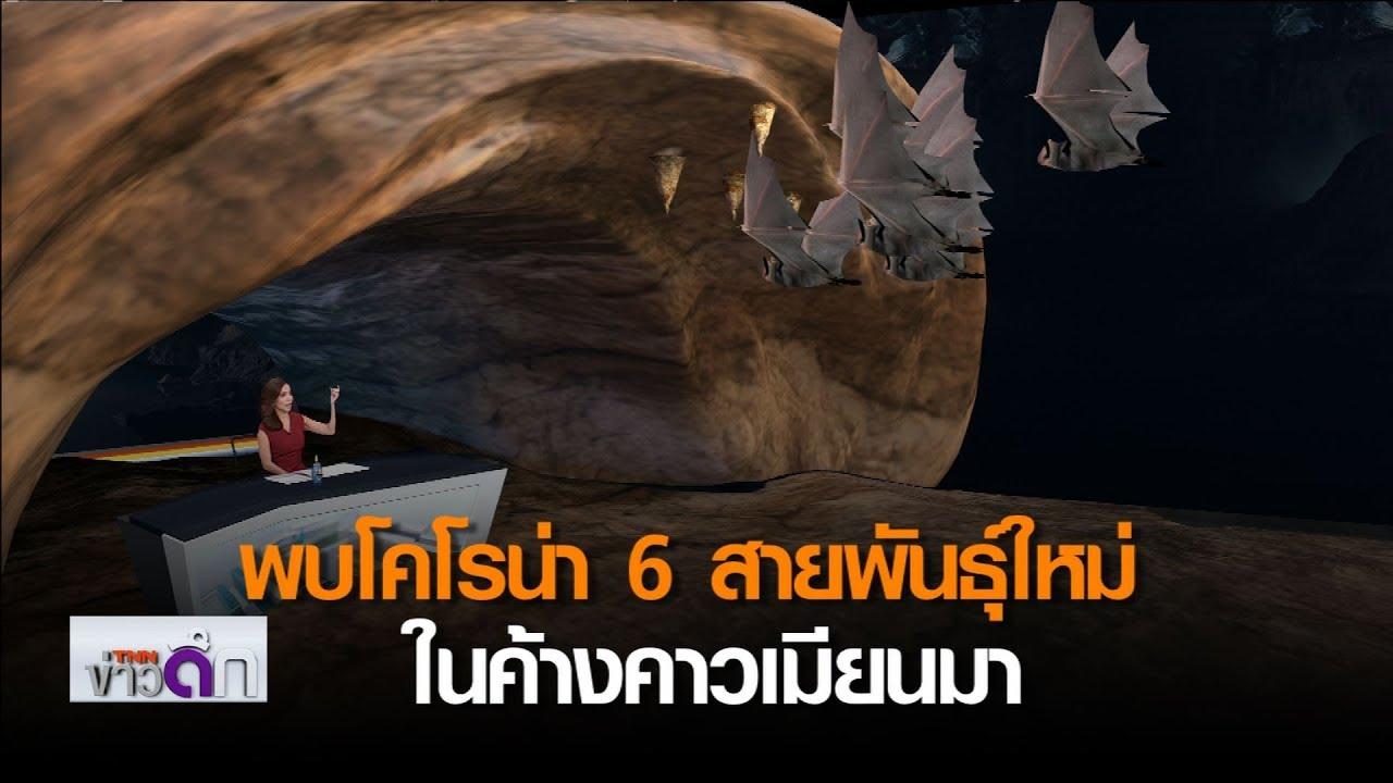 พบโคโรน่า 6 สายพันธุ์ใหม่ในค้างคาวเมียนมา | 16 เม.ย. 63 | TNN ข่าวดึก
