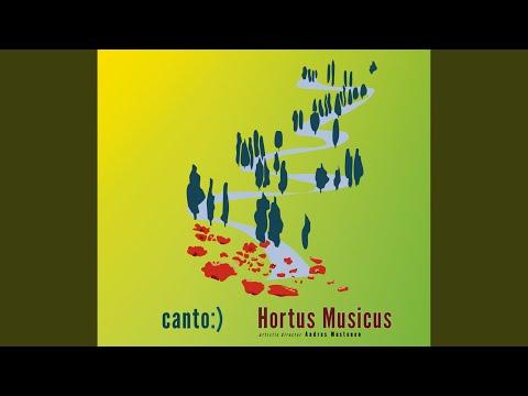 Affetti Musicali, Op. 1: VI. La Soranza