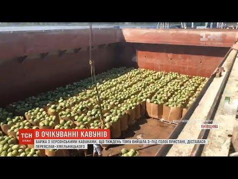ТСН: Баржа з херсонськими кавунами дісталася Київщини