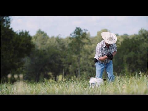Grazing Education  Grass Based Farm Financials - A Pasture Project Webinar