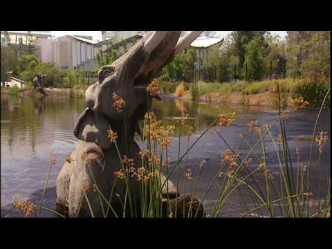 dinosaur-bone-beds:-predator-traps,-family-or-chance?---explore---bbc