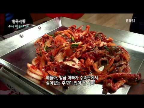 한국기행 - Korea travel_우리는 겨울바다로 간다 1부 바다의 품에 안기면_#001