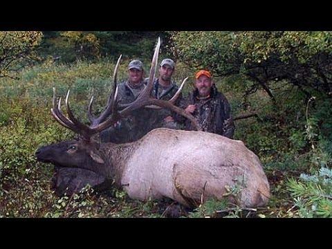 """407"""" GIANT Bull Elk Hunt - Garry Matson - MossBack"""