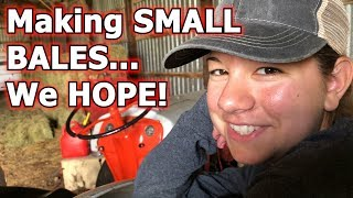 Making Small Hay Bales We Hope | A Big Family Homestead VLOG