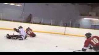 Cruiser Sports - Sledge Hockey