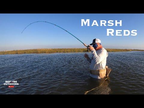 Wade Fishing West Galveston Bay (REDFISH)