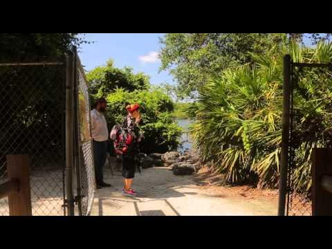 Орёл и Решка - 6.2 Выпуск (Курортный сезон . Анталия) from YouTube · Duration:  44 minutes 59 seconds