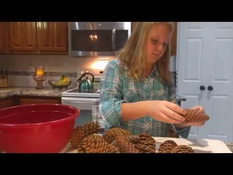 Pinecone Prep DIY