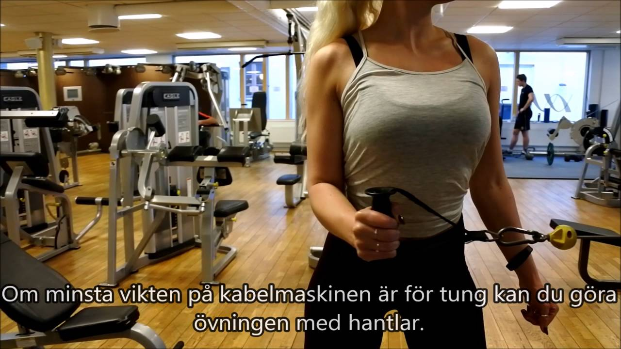 träna rygg gym