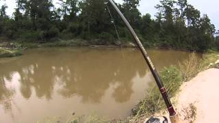 Muddy River Catfishing Chicken Liver Chum Bait VS Hot Dogs