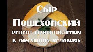 Сыр Пошехонский в домашних условиях   Рецепт приготовления
