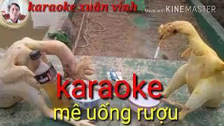 Mê uống rượu bia nhiều( chế )(karaoke xuân vinh)