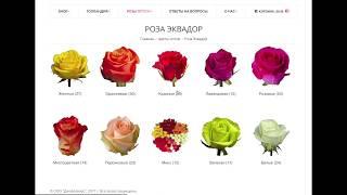 видео Купить луковицы тюльпанов недорого у Украине