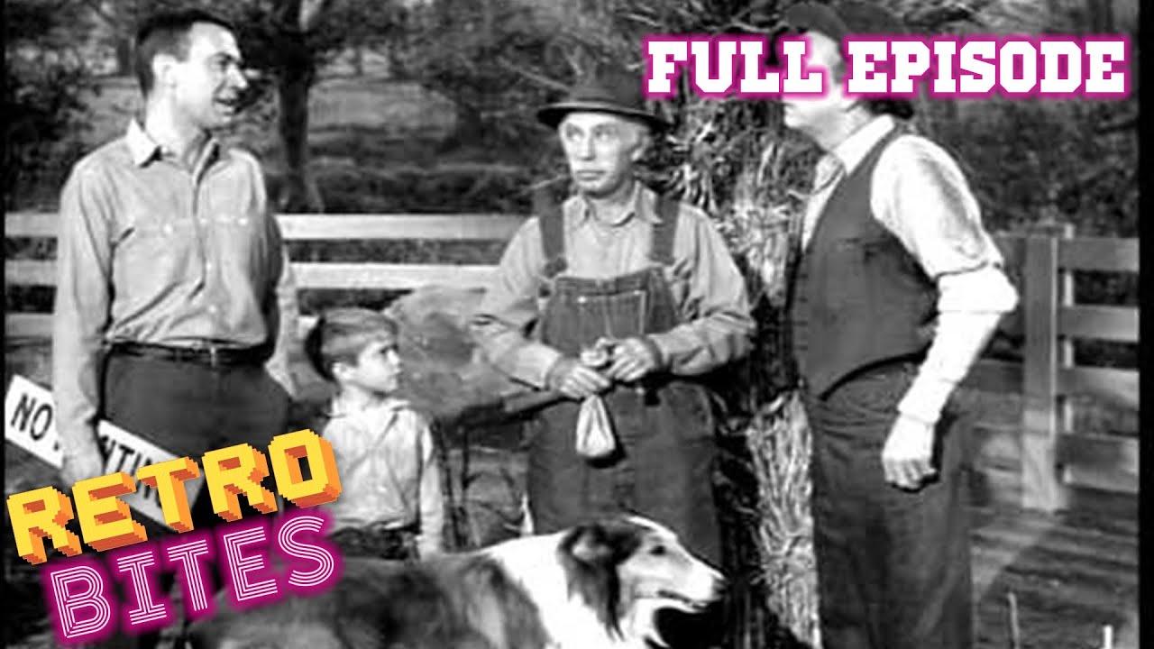 Download The Camera   Full Episode   Lassie   Retro Bites