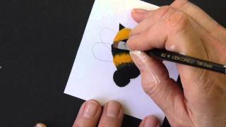 Draw and paint a Bumble Bee with acrylics