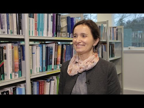Focus On - A multicultural profile: an Executive MBA - Rennes School of Business