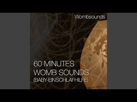 60 Minutes Womb Sounds