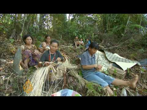Malaysia's Penan tribe resist logging firms - 03 Sep 09