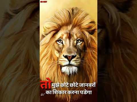 Allu Arjun whatsapp status hindi dailoug full screen