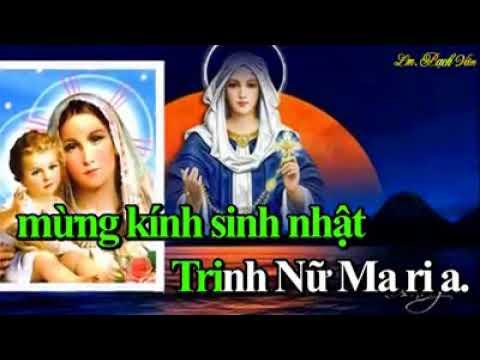 MỪNG SINH NHẬT MẸ MARIA – Lm. Bạch Vân