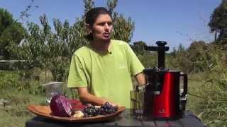 """""""bloody juice"""", le jus de tous les organes !- www.regenere.org"""