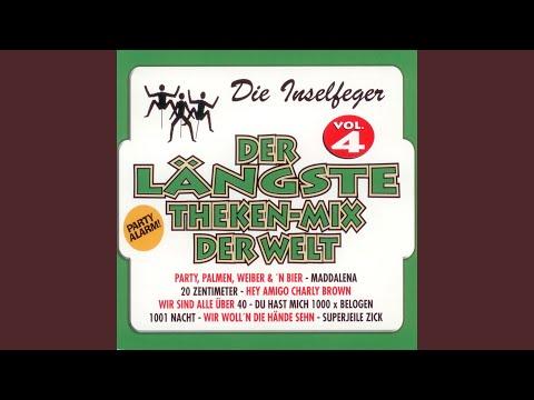 Der Längste Theken-Mix Der Welt Vol. 4 (Single Mix)