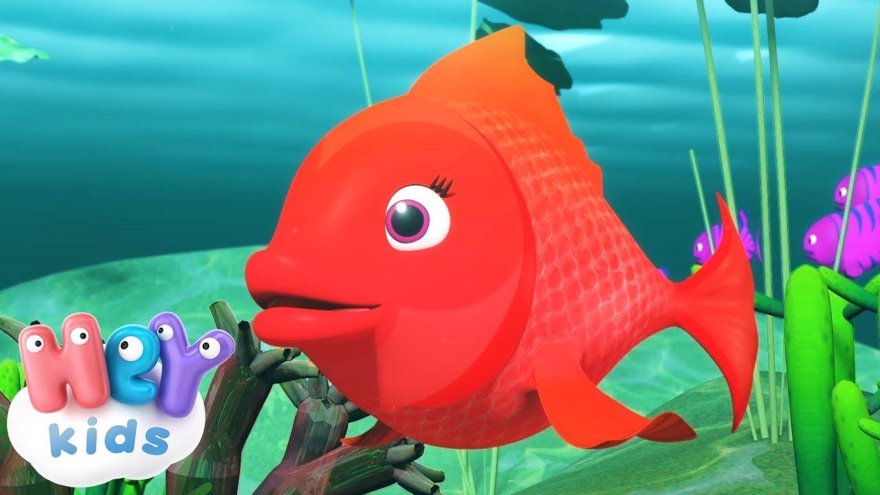 Kırmızı Balık şarkısı + Kirmizi Balik Gölde karaoke | HeyKids