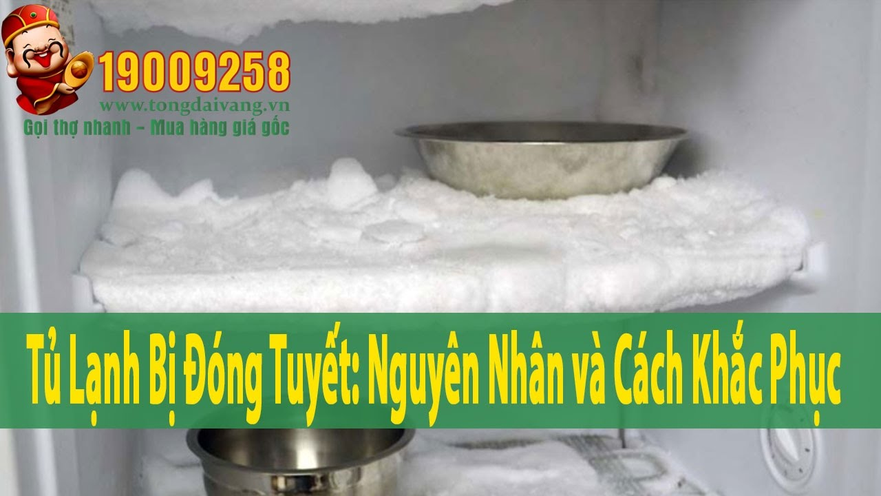 Tủ lạnh bị đóng tuyết: Nguyên nhân và Cách khắc phục   Tổng Đài Vàng 19009258