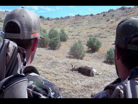 Antelope Trailer