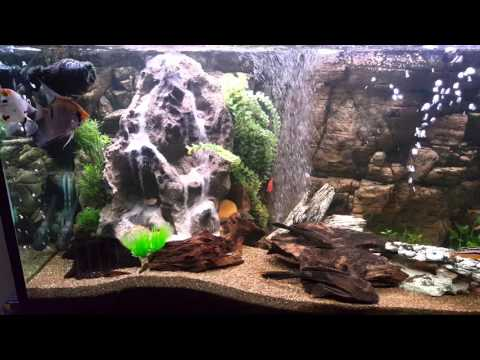 My aquarium waterfall sandfall funnycat tv for Aquarium waterfall decoration