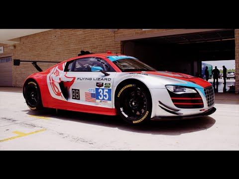COTA Welcomes Flying Lizard