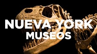Los 3 museos más importantes de Nueva York