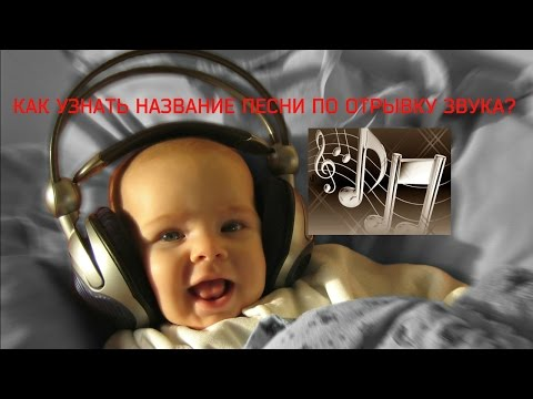 Shazam - Шазам онлайн лучшая программа для распознавания музыки