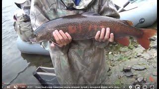 Рыбалка в глухой тайге Серия 4 Выживание Охота Сибирь Медведь Тайга Хариус Таймень Ленок Природа