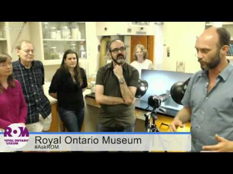 Tour the Ichthyology Lab