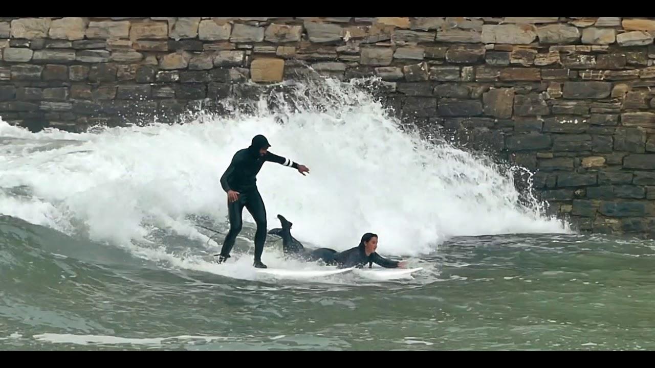 Surfing in the Urumea River - Surf en el rio Urumea