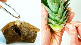 남은 음식과 음식물 쓰레기를 현명하게 재활용하는 42가…