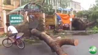 Bão số 11 gây nhiều thiệt hại tại các tỉnh miền Trung