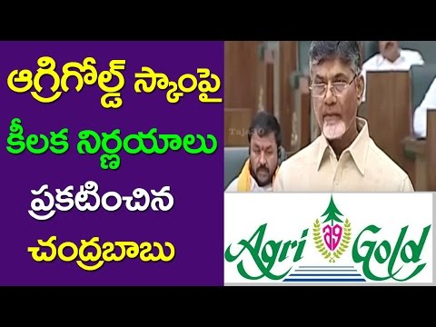 Cm Chandrababu On Agri Gold Assets | AP Assembly | Ys Jagan Vs Chandrababu | Taja30