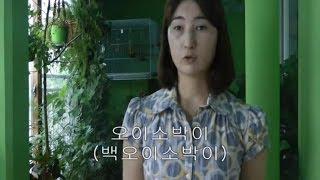 Ю.Корея 175 Фаршированные огурцы (오이 소박이, ои собаги)