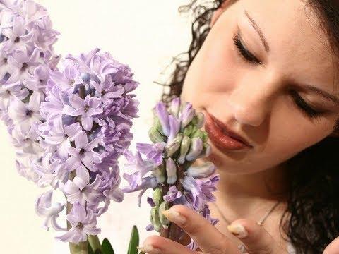 заказать цветы с доставкой курган