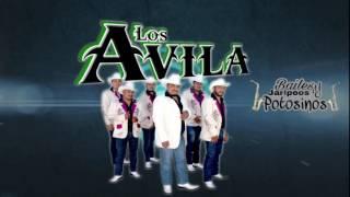 Los Avila  - Huapangos a puro Saxofón de oro 2017 thumbnail